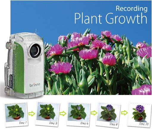Plant Time laspe Brinno TLC200 EDM